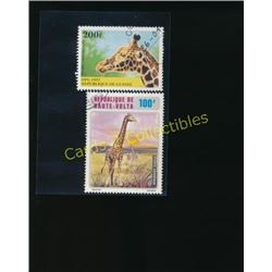 Lot Of 2 Foreign Giraffe Postage Stamps