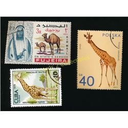 Lot Of 3 Foreign Giraffe & Camel Stamps