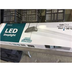innovalighting LED shoplight