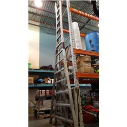14 FOOT ORCHARD LADDER