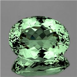 Natural Green Tea Color Green Amethyst 50.40 Cts - FL