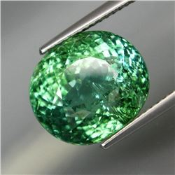 Natural  Paraiba Color Tourmaline 11.26 Cts