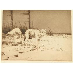 Etching by Michael Coleman