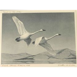 Duck Stamp & Print