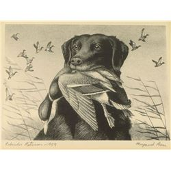 Migratory Bird Hunting Stamp & Print