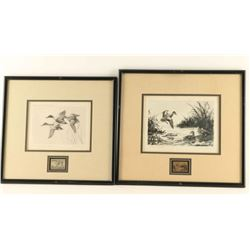 (2) Duck Stamps & Prints