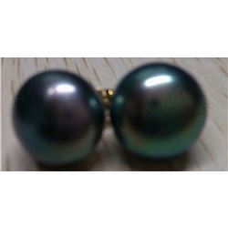11-12mm Natural Black Tahitian Pearl 14kt Gold Post Earrings