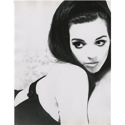 Liza Minnelli (6) oversize custom photographs from London in the 1960s by Jacques Bonnet.