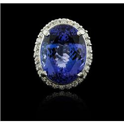 14KT White Gold 23.51 ctw Tanzanite and Diamond Ring