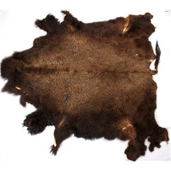 Wild Montana Trophy Buffalo Fur Hide