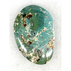 Evan's Mine Baja California Turquoise Cabochon