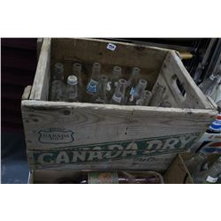 Canada Dry Shell with 15 Pop Bottles