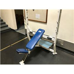 HAMMER STRENGTH WHITE / BLUE VERTICAL BENCH PRESS