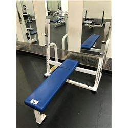 PARAMOUNT WHITE / BLUE HORIZONTAL BENCH PRESS
