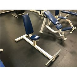 WHITE / BLUE INDUSTRIAL WEIGHT BENCH
