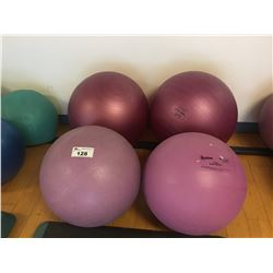 ASSORTED EXERCISE BALLS