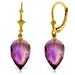 Genuine 19 ctw Amethyst Earrings Jewelry 14KT Yellow Gold - REF-35N9R