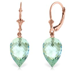 Genuine 22.5 ctw Blue Topaz Earrings Jewelry 14KT Rose Gold - REF-52M2T
