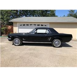 1966 Mustang Coupe