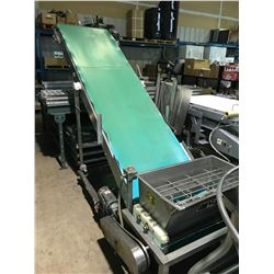 NCI STAINLESS STEEL MOBILE TILTED CONVEYOR SYSTEM WITH HEATER