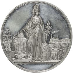 GREAT BRITAIN: white metal medal, 1856. UNC