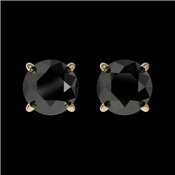 1 CTW Fancy Black VS Diamond Solitaire Stud Earrings 10K Yellow Gold - REF-25F2N - 33054