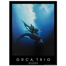 Orca Trio by Wyland