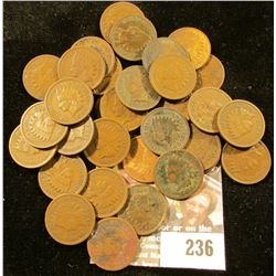 (35) 1905 Indian Head Cents.