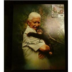 """946 _ 8"""" x 10"""" color, autographed photo of Marlin Perkins with a Chimpanzee."""