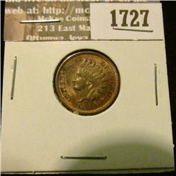 1727 _ 1894 Indian Head Cent. EF-40.