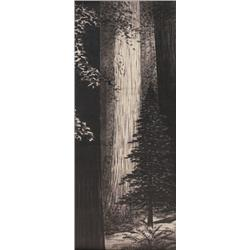 Lillian Miller painting, Forest Monarch