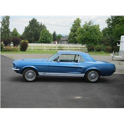 FRIDAY NIGHT 1967 FORD MUSTANG GTA NUT AND BOLT RESTORATION