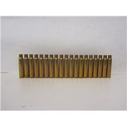 19 PIECES OF 338 WIN MAG BRASS