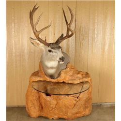 Unique Deer Mount with Table