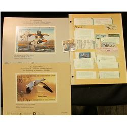 Two Different Duck Stamp posters (1988 & 89)l & a large group of old Hunting License, many of which