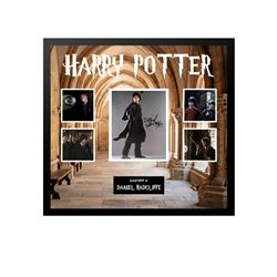 Daniel Radcliffe Signed Harry Potter Collage