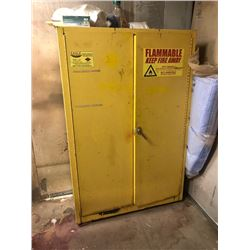Explosion Proof Wall Cabinet