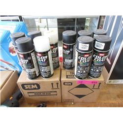 22 Tins of Spray Paint - Most are Satin Black
