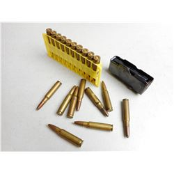 ASSORTED 308 AMMO & MAGAZINE