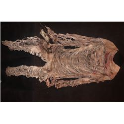 MUMMY ANCIENT EGYPTIAN CORPSE COMPLETE BODYSUIT COSTUME 2
