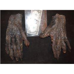 ZZ-CLEARANCE MUMMY ALIEN DEMON CREATURE WEARABLE COSTUME GLOVES