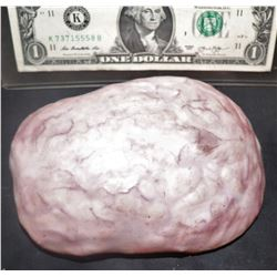 THE KNICK SILICONE BRAIN WITH MEMBRANE INTACT