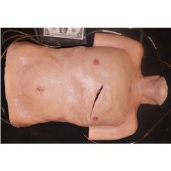 THE NICK SURGERY TORSO REUSABLE