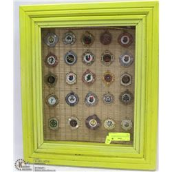 25 CELTIC PCS IN GREEN DISPLAY CASE