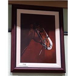 FRAMED OIL ON BOARD OF A HORSE SIGNED MACKAY