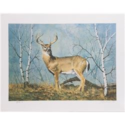 Peter Darro, White Tail Deer, Lithograph