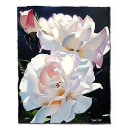 Two White Roses by Davis, Brian