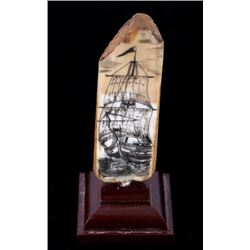 Ancient Scrimshaw Wooly Mammoth Tusk
