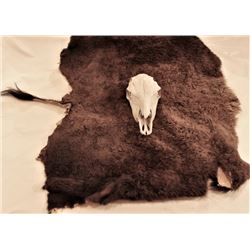 Collection of 2 includes good tanned buffalo robe