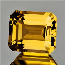 Natural AAA Golden Yellow Citrine {Flawless-VVS1}